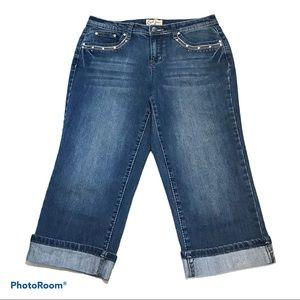 Earl embellished capri jeans 8P